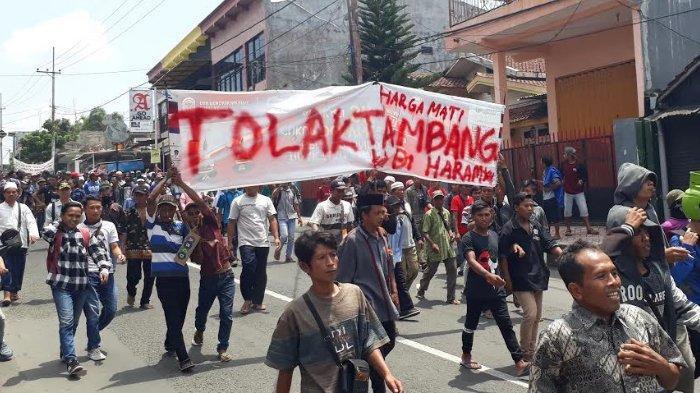 Petani Kopi di Silo Jember: 'Kopi Menghidupi Kami, Kami Tidak Butuh Tambang'