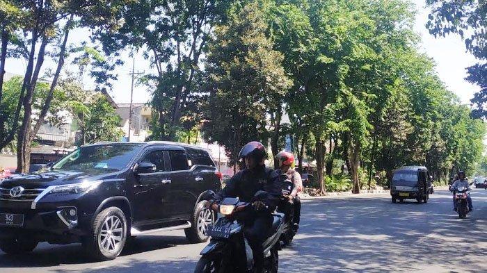 Pengguna Jalan Mengaku Was-was Pohon Tumbang, Masuki Musim Hujan Identik Angin Kencang