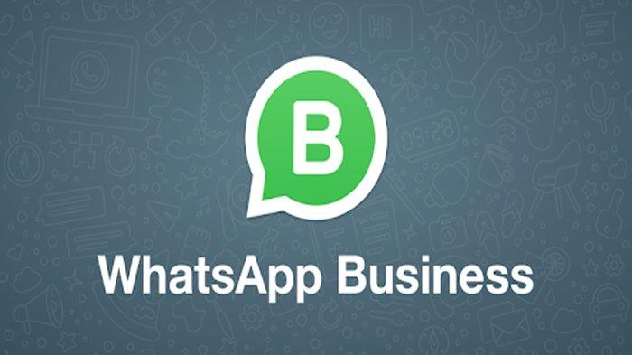 Tambah Penghasilan Lewat Whatsapp Wa Dengan Layanan Business Bisa Mempermudah Bisnis Online Halaman All Surya