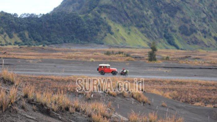 Lindungi Rumput di Padang Savana Gunung Bromo, Jalur Wisatawan Akan Dialihkan