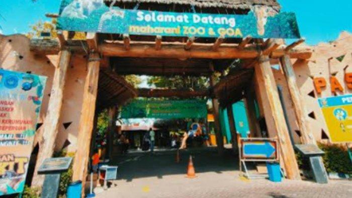 Libur H+3 Idul Fitri, Pengunjung Maharani Zoo di Lamongan Jatim Masih Sepi