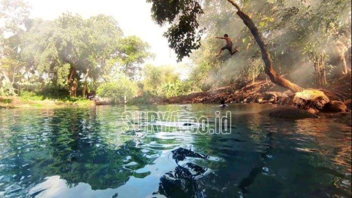 Pemandian Alam Sumber Mrutu Kabupaten Lumajang, Destinasi Wisata Baru yang Instagramable