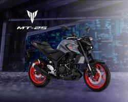 Ini Warna Baru Yamaha MT-25, Harga Tetap, Kisaran Rp 55 Juta