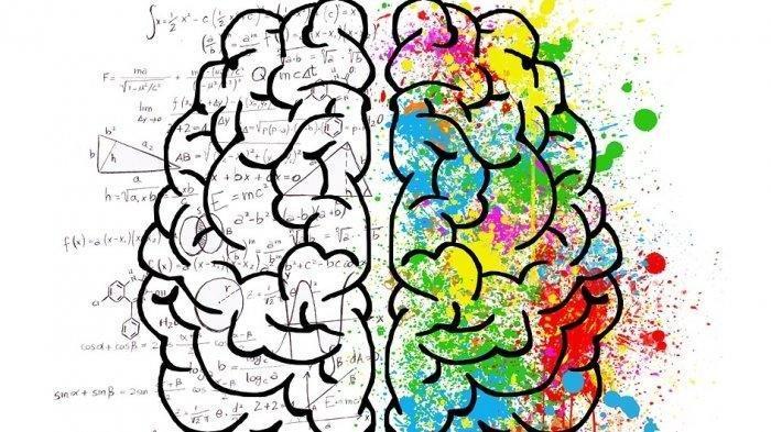 Yuk Ikut Tes Kepribadian! Buktikan Apakah Kamu Pengguna Otak Kanan atau Kiri, Cukup Lakukan 2 Cara