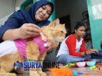 baju-aksesoris-kucing_20180227_002543.jpg