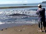 bangkai-hiu-paus-yang-terdampar-di-pantai-bayem-tulungagung.jpg