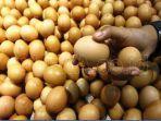 bantuan-pangan-non-tonai-bpnt-berupa-telur.jpg