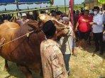 bazar-hewan-kurban-di-desa-samatan-kecamatan-proppo-pamekasan.jpg