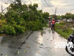 berita-kondisi-tiang-listrik-dan-pohon-ambruk-akibat-angin-kencang-di-sukodono-sidoarjo.jpg