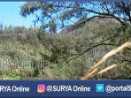berita-pasuruan-lembah-kijang-alas-lali-jiwo-gunung-arjuno_20161214_100656.jpg
