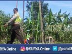 berita-sidoarjo-sutet-perumahan-makarya-binangun_20160915_214643.jpg