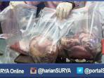 berita-surabaya-daging-babi-celeng_20160610_151956.jpg