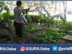 berita-surabaya-taman-flora-bratang_20160822_133529.jpg