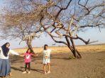 berkunjung-di-taman-nasional-baluran-banyuwangi-jawa-timur.jpg