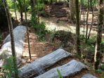budidaya-bambu-di-dongko-trenggalek.jpg