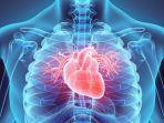 cara-cegah-penyakit-jantung-dengan-5-makanan-alami-kenali-juga-penyebabnya-yang-sering-disepelekan.jpg