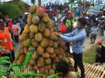 durian_20180224_164755.jpg
