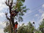 evakuasi-jasad-warga-mojokerto-yang-meninggal-di-atas-pohon.jpg