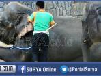 gajah-tunggang-di-goa-maharani-zoo_20151231_143627.jpg