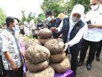 gubernur-khofifah-panen-porang-di-desa-klangon-kecamatan-saradan-kabupaten-madiun.jpg