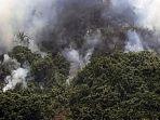 hutan-besowo-kediri-kebakaran.jpg