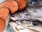 ikan-dengan-kandungan-omega-3_20160905_144334.jpg