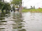 jalan-raya-morowudi-terendam-banjir.jpg