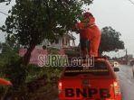 kabupaten-bangkalan-mengevakuasi-pohon-tumbang.jpg