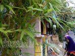 kampung-girilaya_20171018_220112.jpg