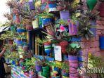 kampung-warna-warni-manyar-sabrangan-surabaya.jpg
