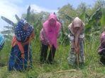 karang-taruna-dan-warga-desa-kedungturi-lamongan-program-menanam-pohon-kelor.jpg
