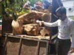 kayu-jati-ilegal-di-mapolres-tuban.jpg