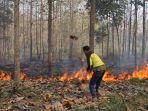 kebakaran-hutan-kemlagi-mojokerto_20180706_171124.jpg