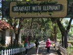 kebun-binatang-surabaya-kbs-resmi-dibuka-kembali.jpg