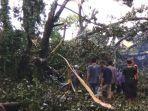 kediri-petugas-bersama-relawan-membersihkan-pohon-tumbang-di-sumber-jimput.jpg