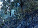 lokasi-kebakaran-di-lereng-gunung-arjuna.jpg
