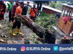 magetan-pohon-tumbang_20170129_211527.jpg