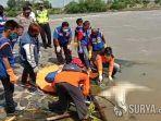 mayat-perempuan-misterius-tanpa-busana-ditemukan-mengapung-di-dam-sipon-sungai-brantas-mojokerto.jpg