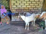 nenek-kaminah-tuban_20180404_134514.jpg