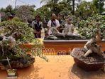 pameran-bonsai-di-saygon-night-park-purwosari-kabupaten-pasuruan.jpg