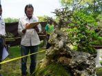pameran-bonsai-di-sidayu-gresik.jpg