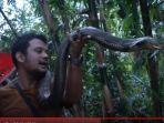 panji-petualang-saat-mencari-king-kobra-garaga-di-pedalaman-hutan-di-jawa-barat-2.jpg