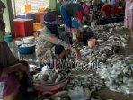 pedagang-ikan-di-tempat-pelelangan-ikan-desa.jpg