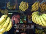 pedagang-pisang-ilustrasi-pisang.jpg