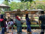 pengunjung-kebun-binatang-surabaya-29102020.jpg