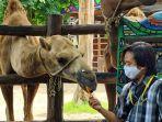 pengunjung-menikmati-wisata-maharani-zoo.jpg