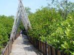 pengunjung-wisata-mangrove-dibatasi.jpg