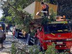petugas-saat-memotong-pohon-yang-menimpa-truk-di-jalan-raya-pasir-putih-situbondo.jpg