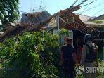 pohon-yang-tumbang-dan-menimpa-satu-rumah-di-jalan-nias.jpg