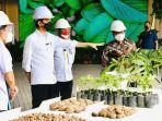 presiden-joko-widodo-bersama-gubernur-khofifah-mengunjungi-pabrik-pengolahan-porang-di-madiun.jpg
